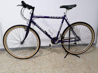 "Bicicleta clásica mountain-bike btt 26"" Tagger"