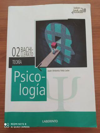 Libro Psicología 2 Bachillerato. Laberinto