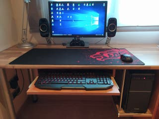 Ordenador PC profesional y gamer con monitor de 24