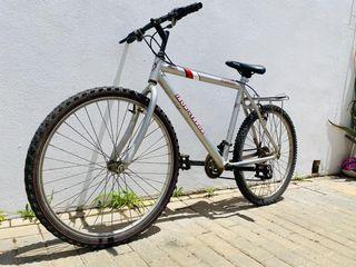 biciclete para Adultos