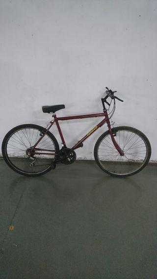 "Bicicleta 26"" Adulto"