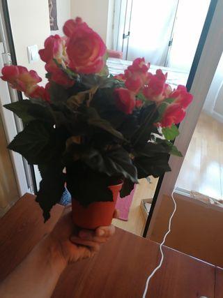 Maceta flores