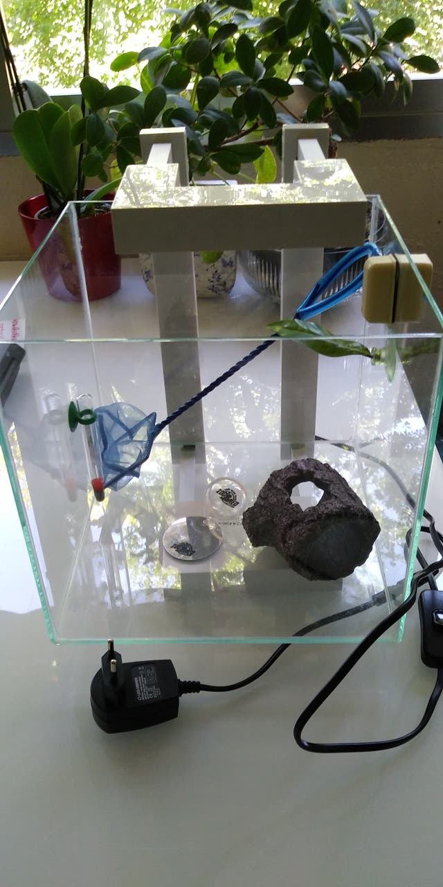 Acuario Nexus Pure Cube