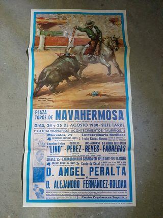 cartel novillada y rejones