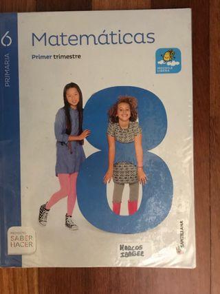 Libro Matemáticas 6 primaria