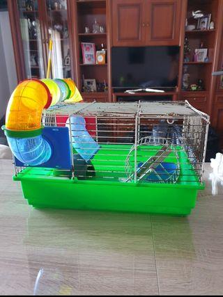 jula para ratones o hamster
