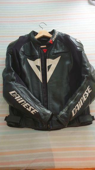 chaqueta cazadora dainese