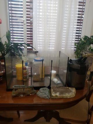 pecera ,accesorio y filtro