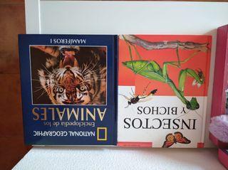 libro niño y adulto cuentos