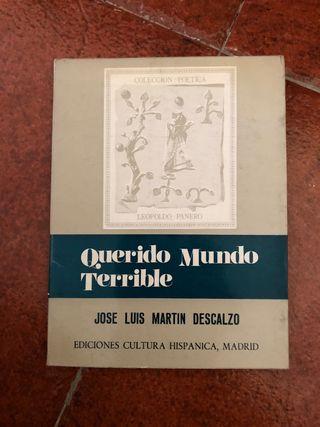 QUERIDO MUNDO TERRIBLE JOSE LUIS MARTIN DESCALZO