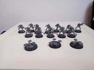Necron Warriors with canoptek scrabs