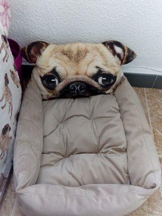 Cama perro Carlino nueva