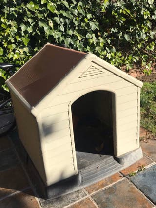 Casa caseta de perro