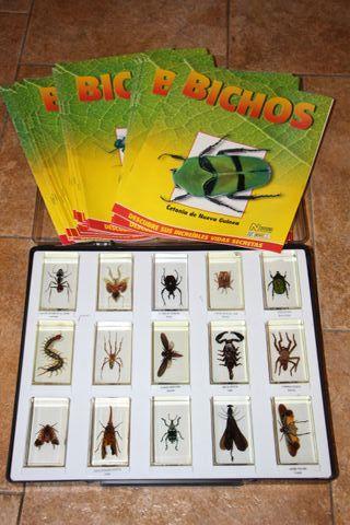 15 unidades colección bichos mas revistas