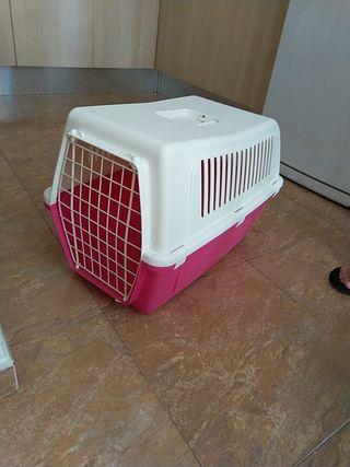 Kayla de transporte gatos I cachorro