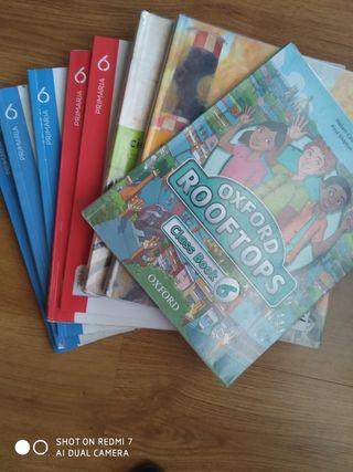libros 6 (sexto) primaria