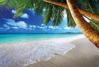 PAPEL PINTADO XXL playa