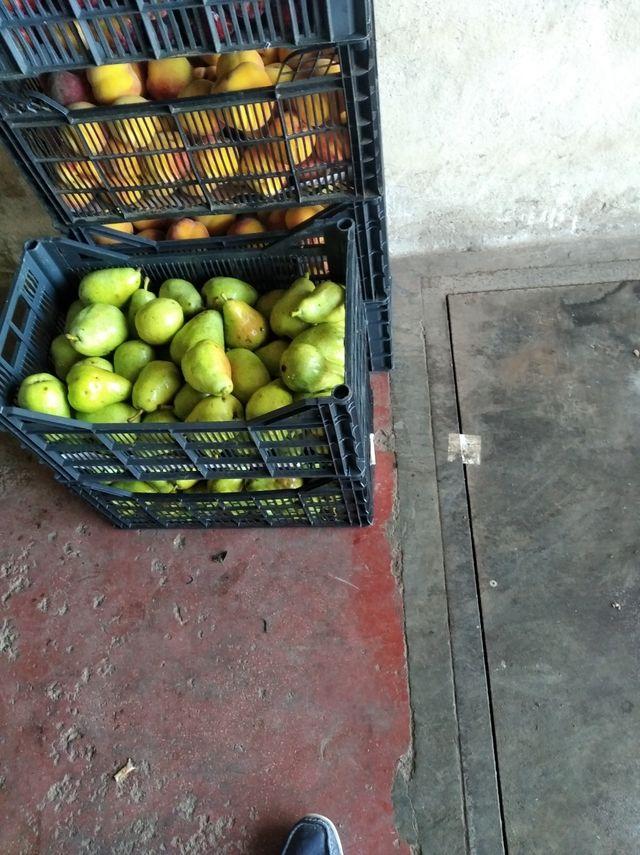 Frutas, verduras y hortalizas de temporada
