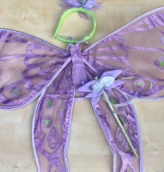 SET de disfraz que incluye alas, barita y tiara