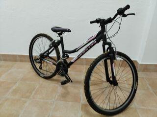 Bicicleta Everest Newstar aluminio