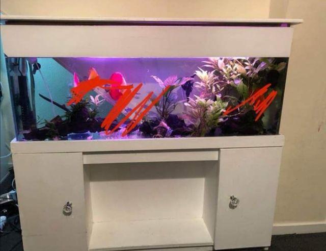 4ft Fish Tank Aquarium