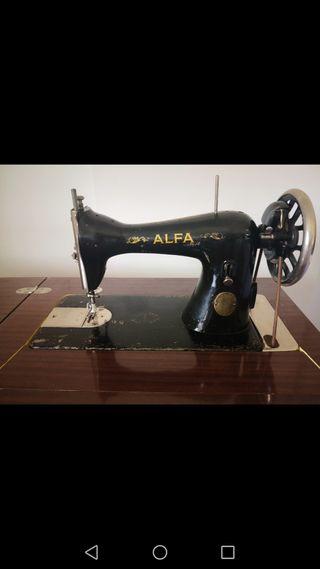 Máquina coser Alfa