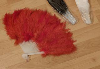 Abanicos plumas