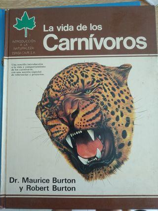 Pack de 5 libros sobre animales