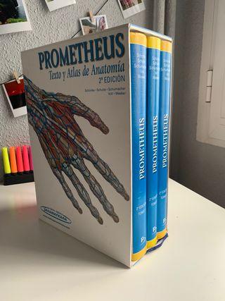Lote Atlas de Anatomía Prometheus 3 tomos