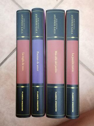 Colección de libros biblioteca Antonio Gala