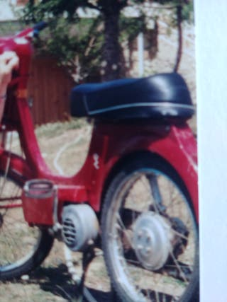 Vespino gl y puch minicross