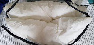 Pillow pair