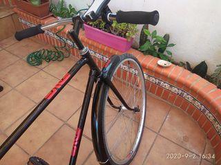 Bicicleta urbana Enve bikes fix