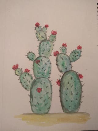 Acuarela original: cactus