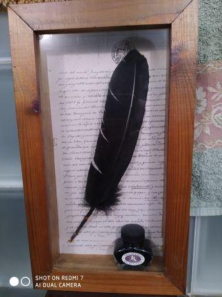 pluma de ave. pluma antigua y tintero.