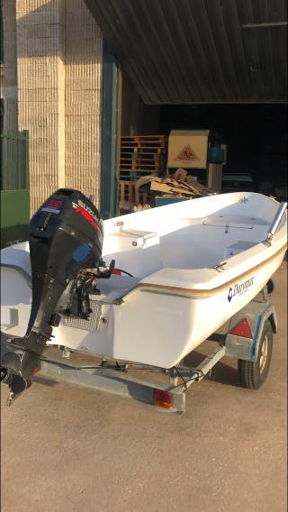 Barca Pesca + Motor + Remolque