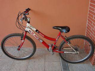 Vendo bicicleta JL-WENTI