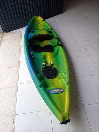 Kayak Pelican