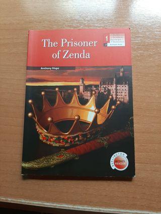 Vendo Libro the prisoner of Zenda