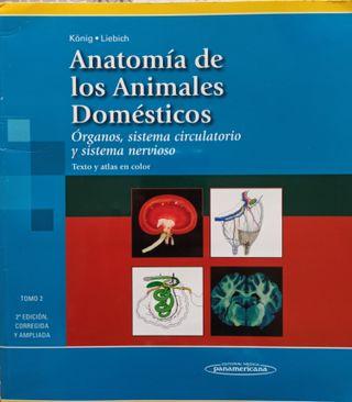 Libro anatomía de los animales