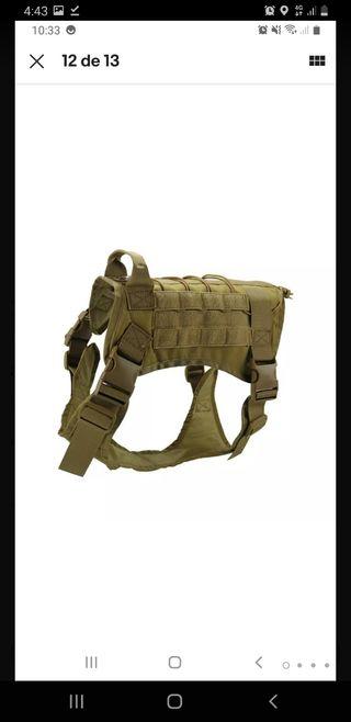 arnes perro militar