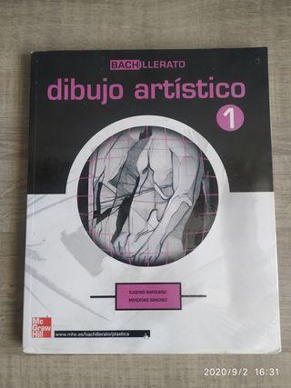 Libro Dibujo Artistico