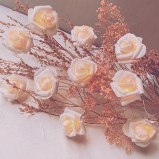 Preciosas Luces de Flores Blancas