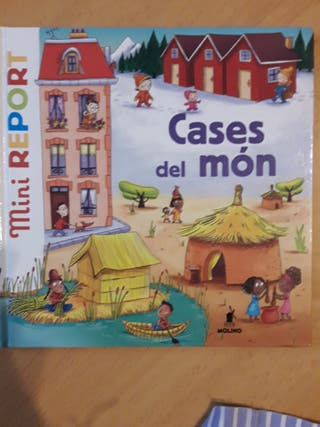 Cases del món. Mini Report.