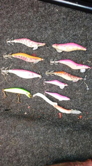 peces chipiron