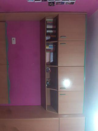 mueble con estanterias + armario