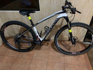 Olympia CsL X 29