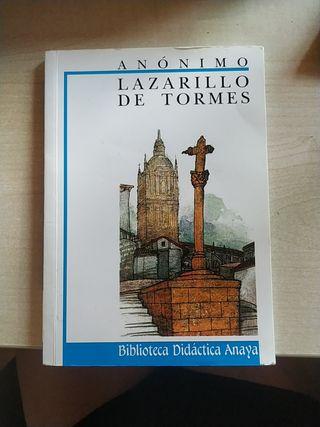 Lanzarillo de Tormes
