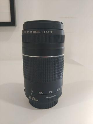 CANON EF 75-300 / f/4-5.6