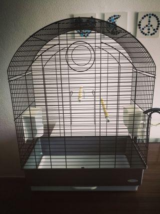 Jaula grande pájaros